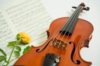 Stilleven van viool, rozenbloem en bladmuziek