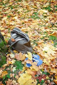 Stoffen milieuvriendelijke rugzak en blauwe sneakers in herfstbladeren