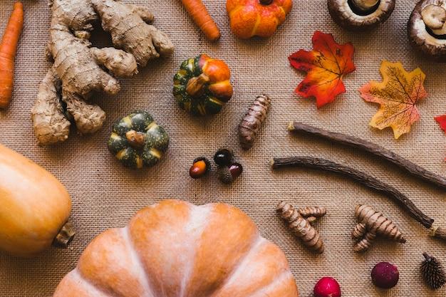 Stokken en bladeren te midden van groenten