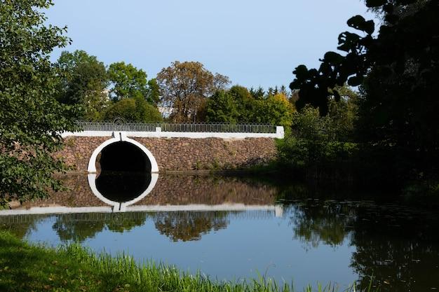 Stone bridge in central park, er staat een grote boom en een weerspiegeling van de vijver die onder de brug stroomt.