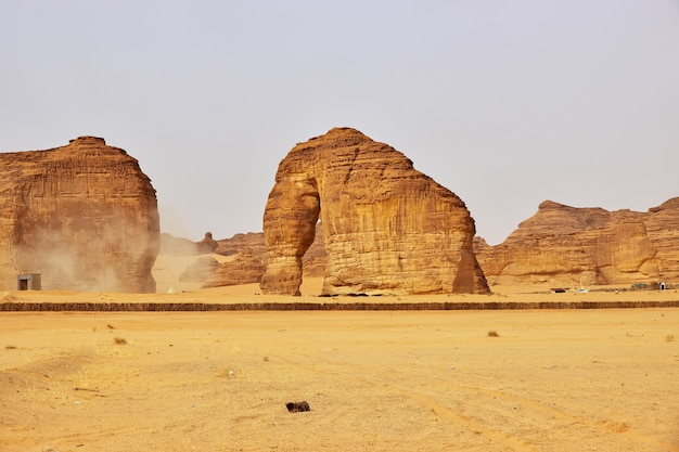 Stone elephant in de woestijn dichtbij al ula
