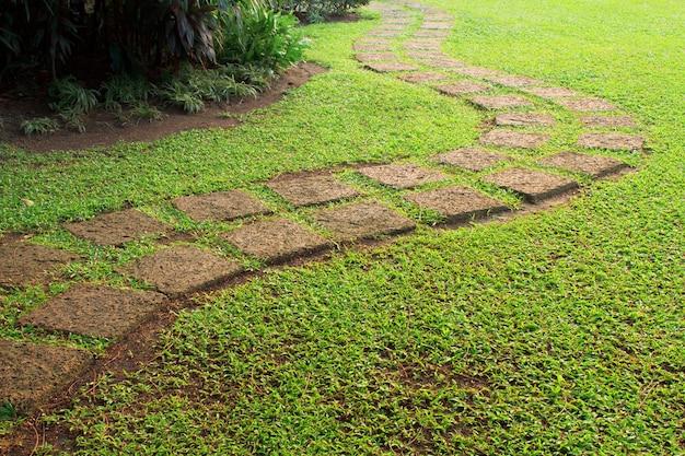 Stone pathway op weg naar de ladder van succes