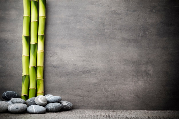 Stones spa-behandelingsscène, zen-achtige concepten.