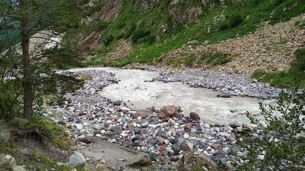 Stormachtige rivier stroomt in een bergkloof Premium Foto