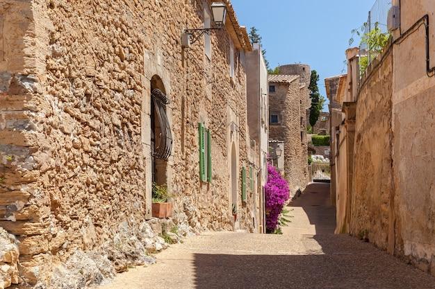 Straat in griekenland. smalle straat en oude gebouwen in zonnig griekenland, karmozijnrode struik.