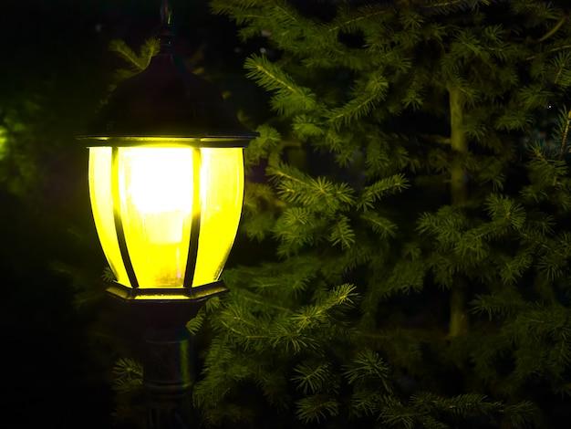 Straat uitstekende lamp met kerstmisboom in de avond buiten