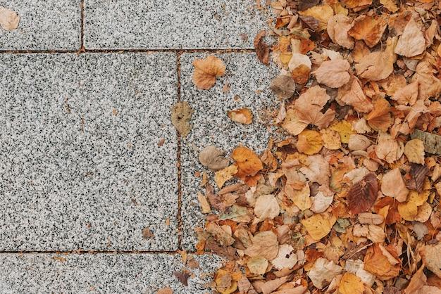 Straatstenen met gele herfstbladeren