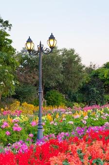 Straatverlichting van lantaarns in park met bloemen