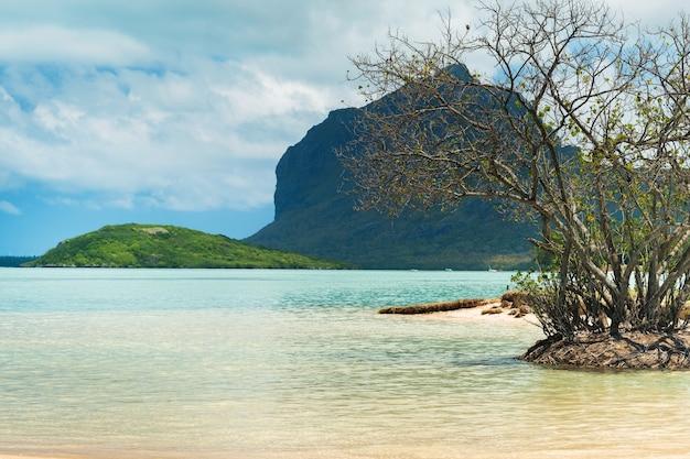 Strand en berg in le morne-brabant. koraalrif van het eiland mauritius.