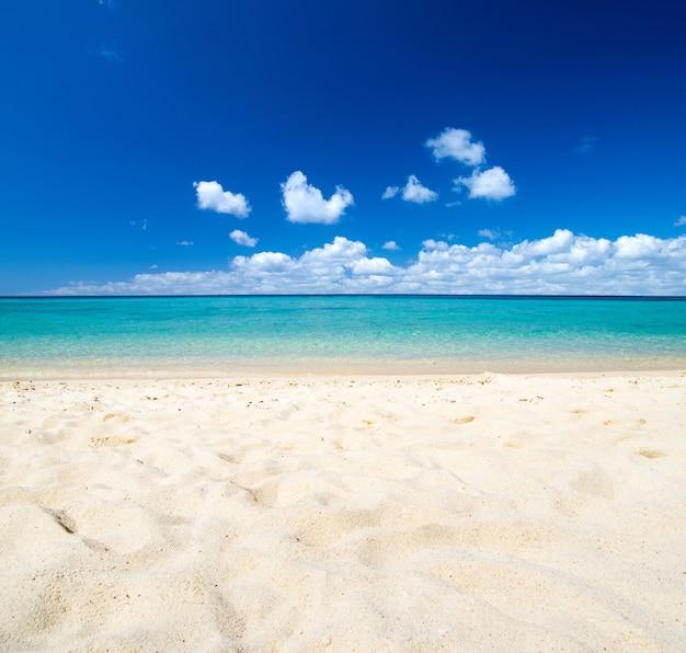 Strand en tropische zee achtergrond