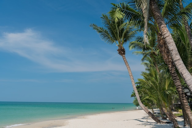 Strand en zee, vakantie en vakantie, mooi tropisch strand met palmen, witte wolken met blauwe lucht