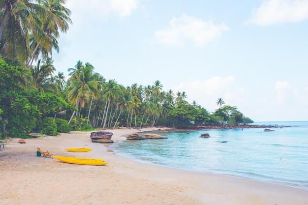 Strand met kajaks en kokospalmen