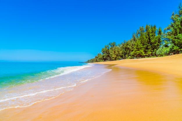 Strand met nat zand en bomen op de achtergrond
