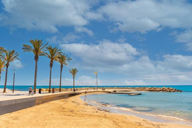 Strand met palmbomen in de kustplaats torrevieja, alicante, valenciaanse gemeenschap