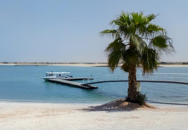 Strand met palmboom, pier en boot op de arabische golf.