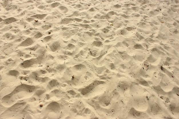 Strand met veel voetafdruk en humus