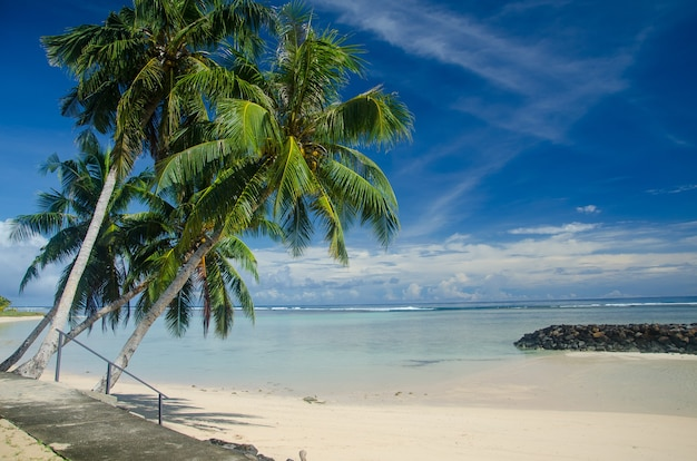Strand omgeven door palmbomen en zee onder een blauwe bewolkte hemel in manase, samoa