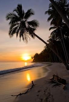 Strand op het tropische eiland. indonesië. indische oceaan.