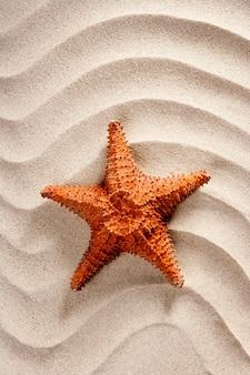 Strand witte golvende zand zeester zomervakantie