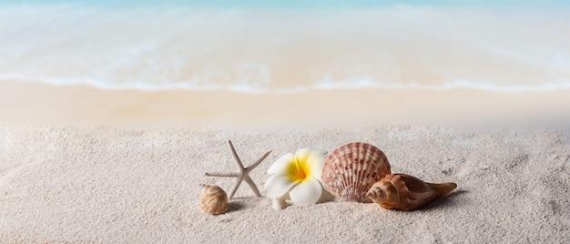 Strandachtergrond, de zomer achtergrondconcept
