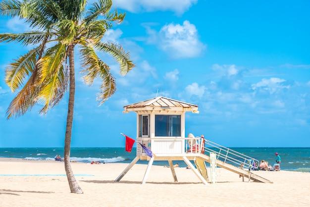 Strandboulevard met palmbomen op een zonnige dag in fort lauderdale