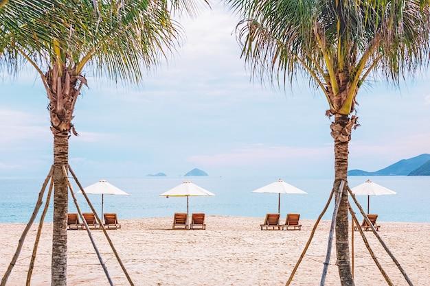 Strandstoelen op het zandstrand in frame van palmbomen. foto met onscherpte in beweging en zachte focus. vietnam, nha trang.