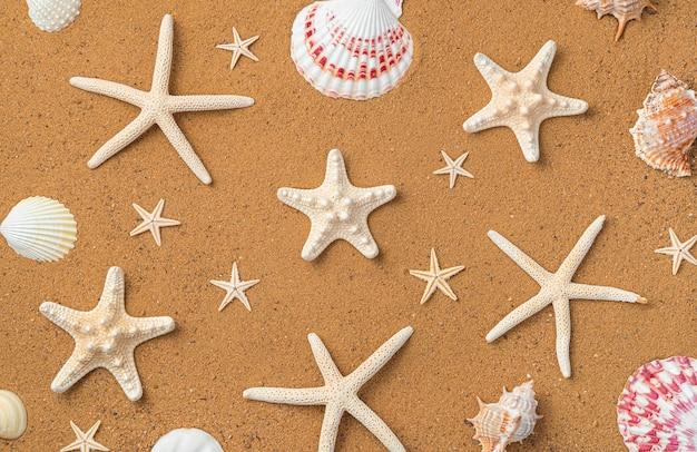 Strandzand met zeesterren en schelpen. bovenaanzicht, kopieer ruimte. achtergrond.