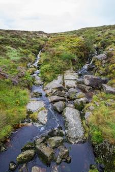 Stream de heuvels van ierland. wicklow park