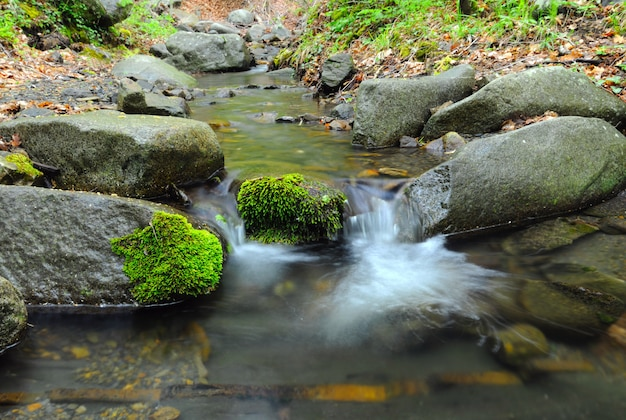 Stream met waterval en bemoste stenen rond