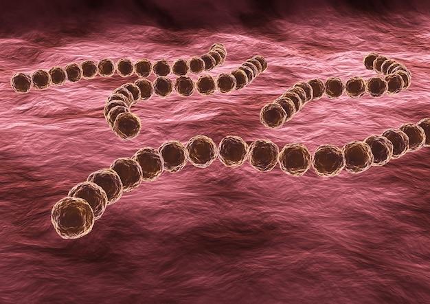 Streptococcus pyogenes is een zeer besmettelijke pathogene bacterie, het kan faryngitis of ernstiger ziekten zoals roodvonk en reumatische koorts veroorzaken. 3d-rendering