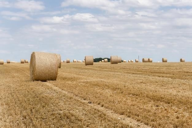 Strobalen gestapeld in een veld in de zomer