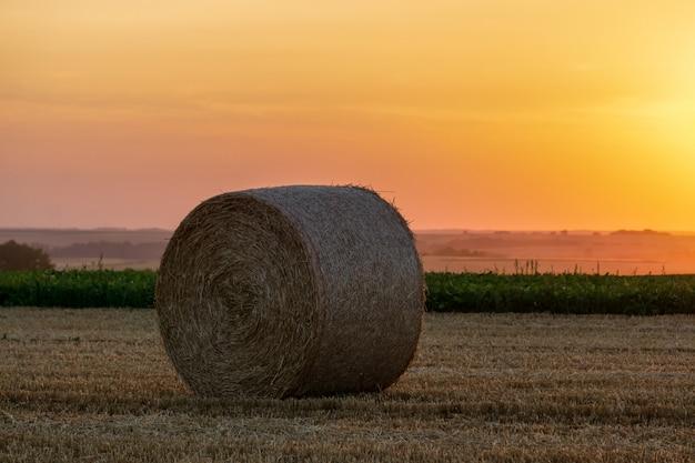 Strobalen op een gebied in zonsondergangtijd worden gestapeld die