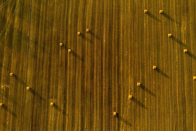 Strobalen op landbouwgrond met een blauwe bewolkte hemel. geoogste veld met balen in europa. oogst. wit-rusland.