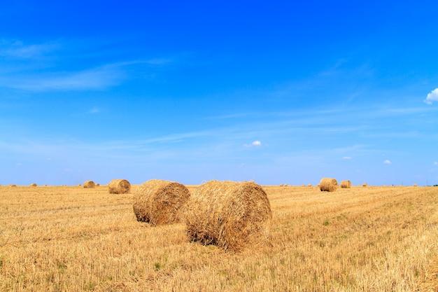 Strobalen wachten op collectie in een veld op de herfst onder een blauwe bewolkte hemel.