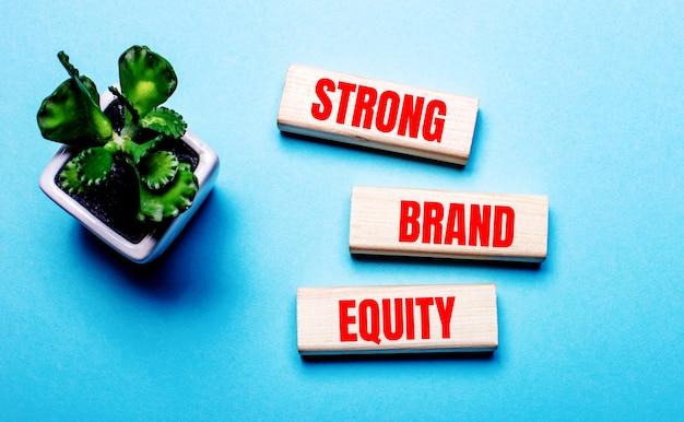 Strong brand equity is geschreven op houten blokken op een lichtblauwe achtergrond in de buurt van een bloem in een pot