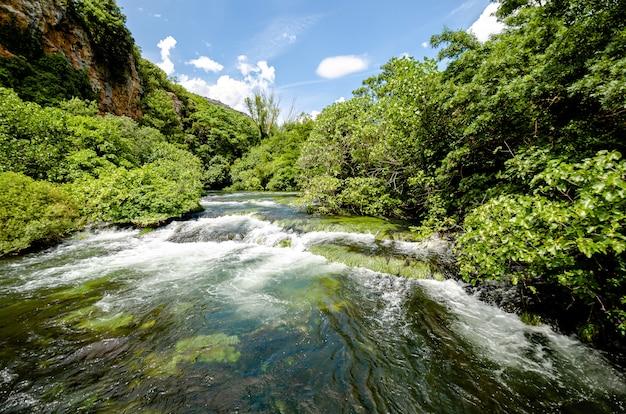 Stroomversnellingen in de rivier krka boven de watervallen van roski slap in dalmatië, kroatië