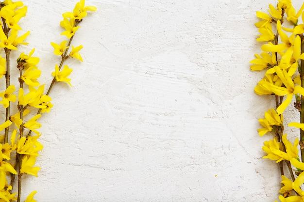 Stucwerk textuur met takjes lente gele bloemen. bespotten voor uw tekst.