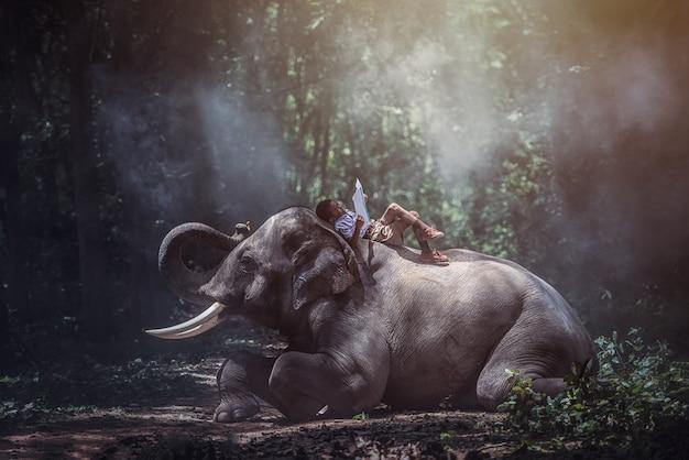 Studenten thailand contryside, het lezen van boeken met olifanten, surin, thailand.