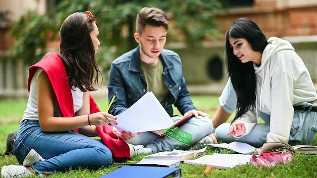 Studenten zitten op het gras en studeren samen in het park