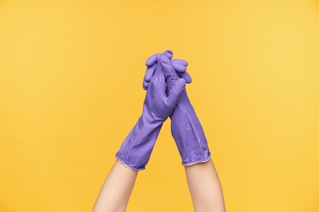 Studio foto van jonge vrouwelijke handen in violet rubberen handschoenen elkaar schudden terwijl poseren op gele achtergrond, vrouw gaat het huis schoonmaken
