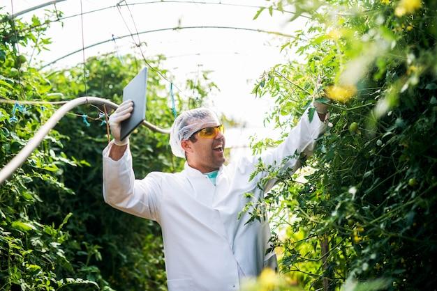 Succesvolle jonge boer met tablet wandelen door de kas met opgeheven armen.