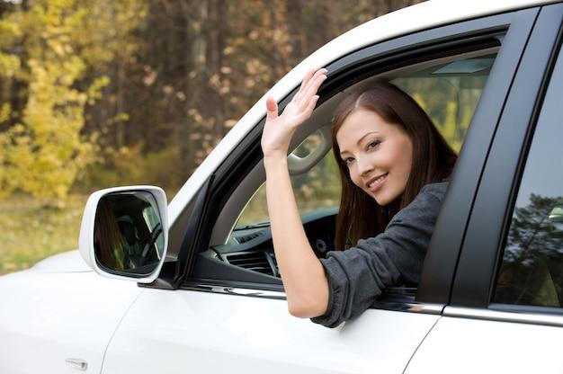 Succesvolle mooie jonge vrouw in de nieuwe auto - buitenshuis