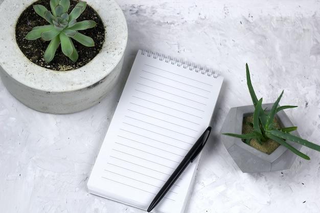 Succulent in een concrete pot en geopende notitieboekje met lege bladspot omhoog