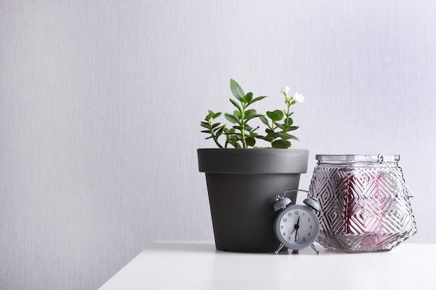 Succulente installatie in pot, wekker en grijze kandelaar op witte grijze lijst.