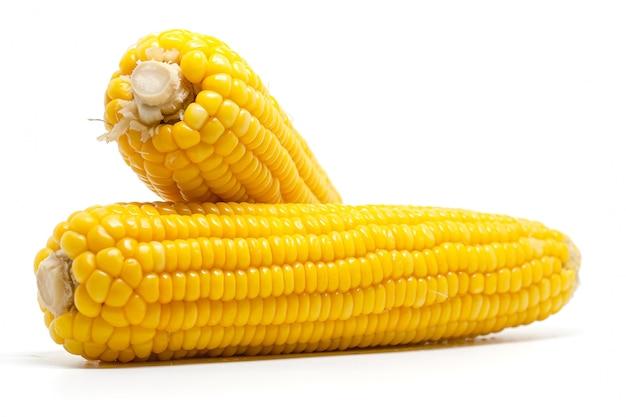 Suikermaïs op wit voor voedselingrediënten en het koken concept