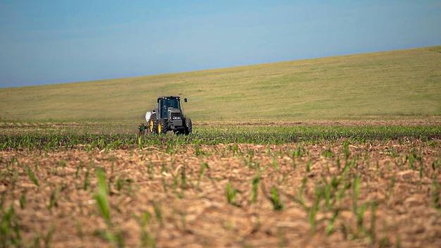 Suikerriet planten door kunstmest en insecticiden met tractor toe te passen