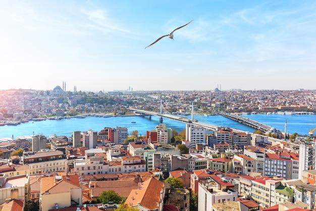 Sultan ahmet-district en de bruggen over de gouden hoorn, istanbul.