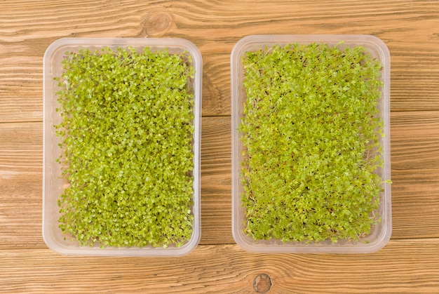 Superfood microgroen in een eco-plastic bakje