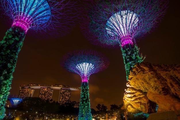 Supertree-tuin bij nacht in tuin door de baai, singapore