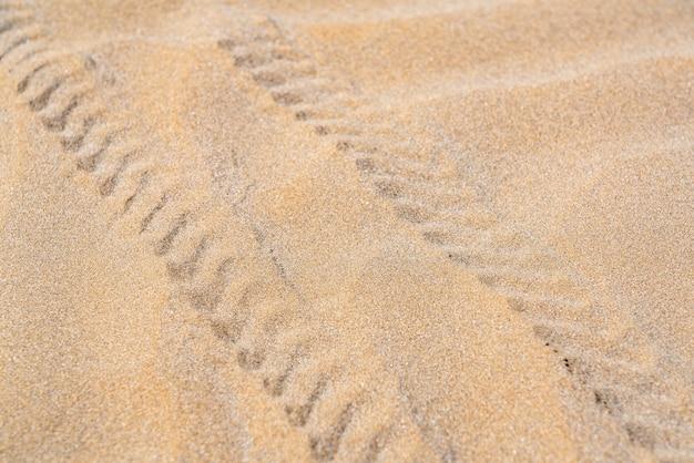 Suv-voetafdruk in het zand